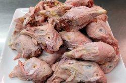 親鶏のあたま(トサカがない場合もあります。採取有) 1.0kg【国産】【鶏ガラ】【冷蔵】(Parent chicken head)