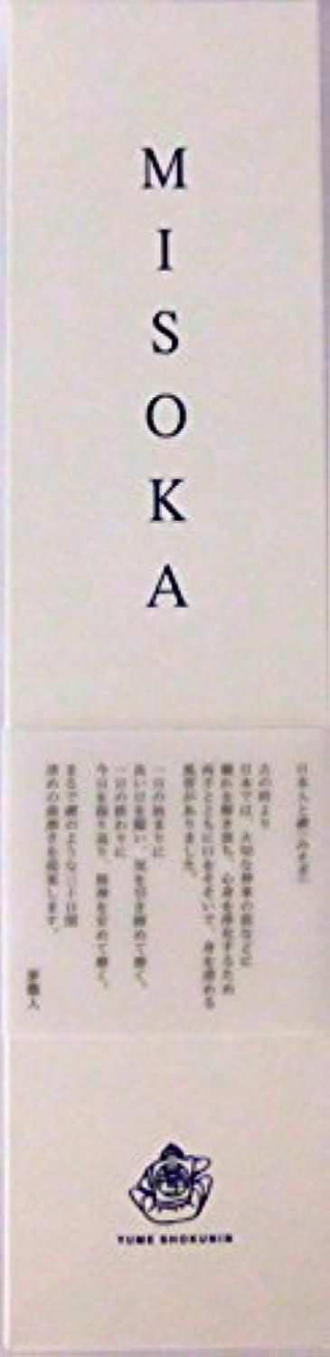 征服更新奨学金MISOKA(ミソカ) 大人用歯ブラシ
