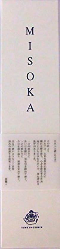 考古学的な実行するナットMISOKA(ミソカ) 大人用歯ブラシ