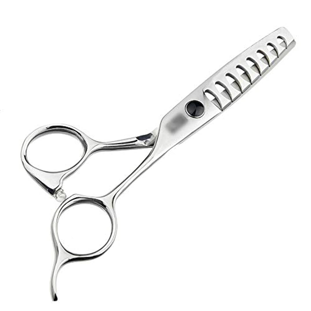 装置きらきらマーキーJiaoran 5.5インチのハイエンド散髪魚の骨のはさみ、ないトレース理髪はさみ、大きな魚の骨のはさみを送信する (Color : Silver)