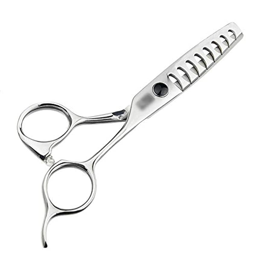 恨みうん利用可能Jiaoran 5.5インチのハイエンド散髪魚の骨のはさみ、ないトレース理髪はさみ、大きな魚の骨のはさみを送信する (Color : Silver)