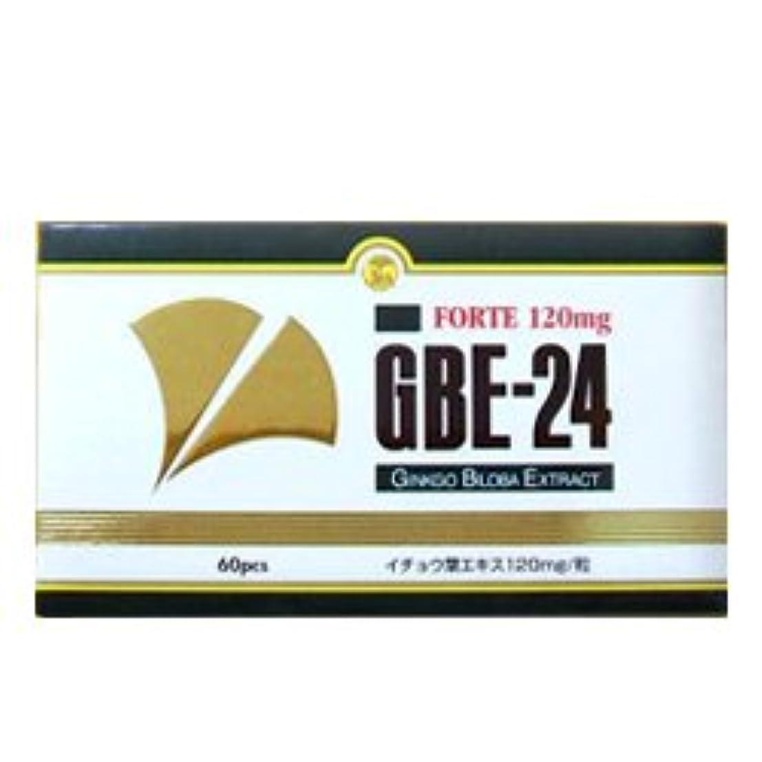 発症篭チューインガムGBE-24 フォルテ イチョウ葉エキス食品 335mg×60粒