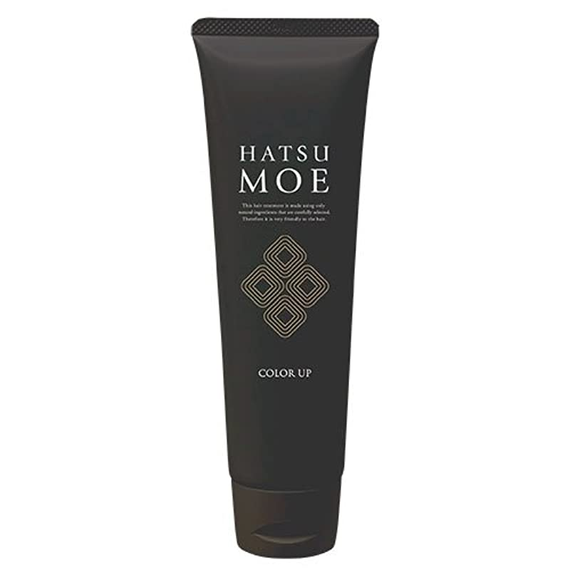 ラショナル信者できない髪萌 カラーアップ ナチュラルブラウン ヘアカラートリートメント 白髪染め 女性 男性 天然植物由来成分使用