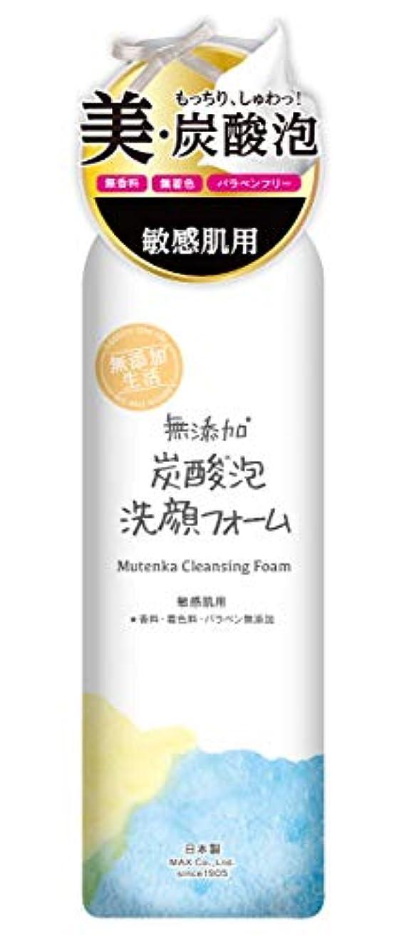 一定侵入する広い無添加 炭酸泡洗顔フォーム