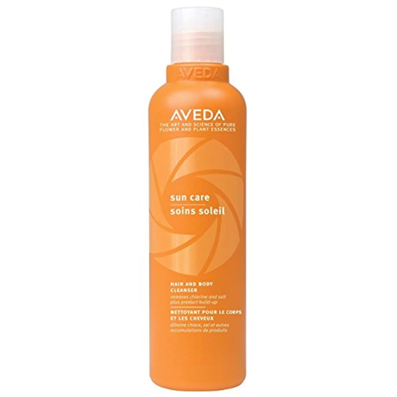 偽干渉伝統的[AVEDA] アヴェダ日ヘア&ボディクレンザー250ミリリットル後 - Aveda After Sun Hair & Body Cleanser 250ml [並行輸入品]