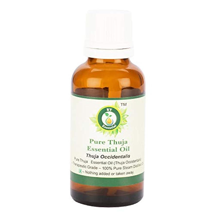 パーティー記述する適応するピュアThujaエッセンシャルオイル300ml (10oz)- Thuja Occidentalis (100%純粋&天然スチームDistilled) Pure Thuja Essential Oil