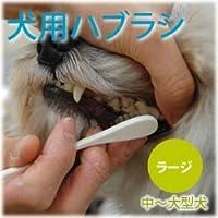 NEW犬口ケア 歯ブラシ ラージヘッド