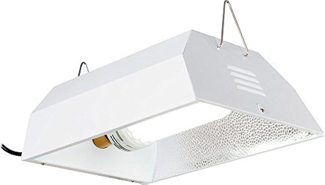 前売草親指125 Watt Light System - White - FLCO125D