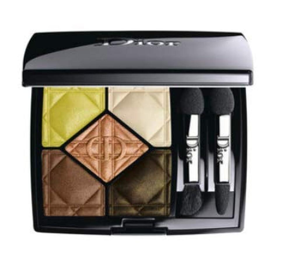 疎外商品フリッパー【Dior(ディオール)】サンク クルール / 607 スパイス アップ (607 スパイス アップ)