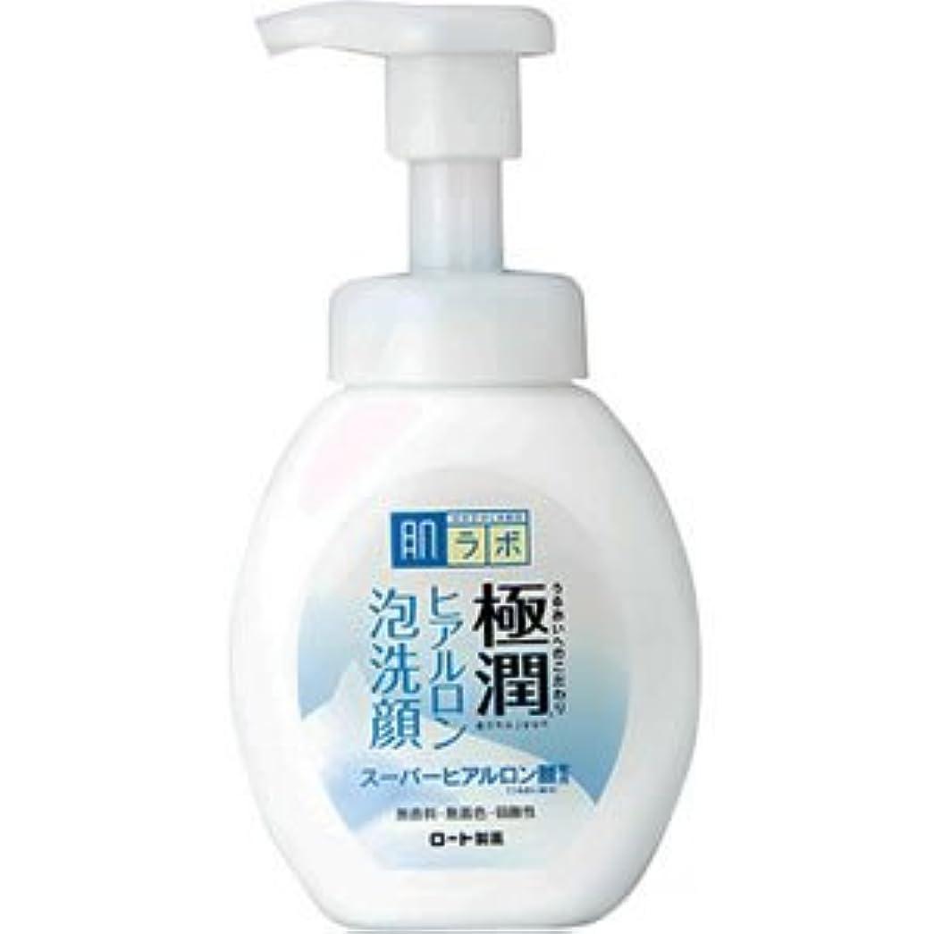 開梱連想裸(ロート製薬)肌研 極潤ヒアルロン泡洗顔 160ml