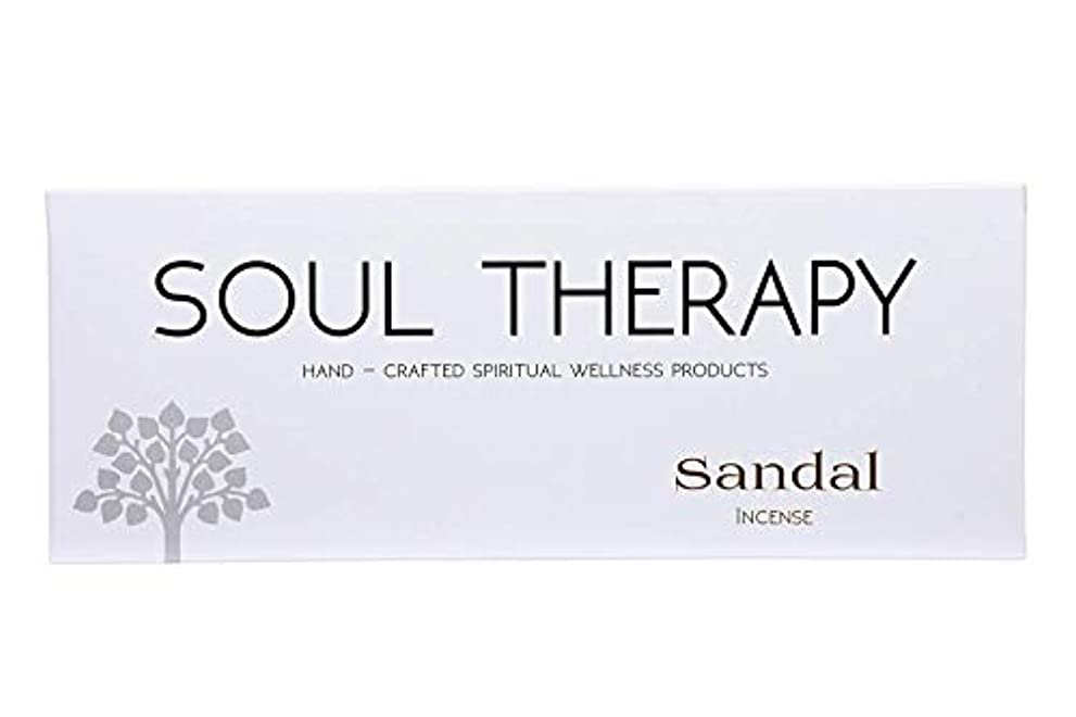 香港成熟食料品店BIC Panchavati Sandal Soultherapy Incense Sticks/Agarbatti (Pack of 6)
