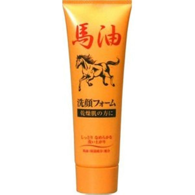 悪化させる申し立てトチの実の木ジュン・コスメティック馬油洗顔フォームN 120G×48点セット (4964653102206)