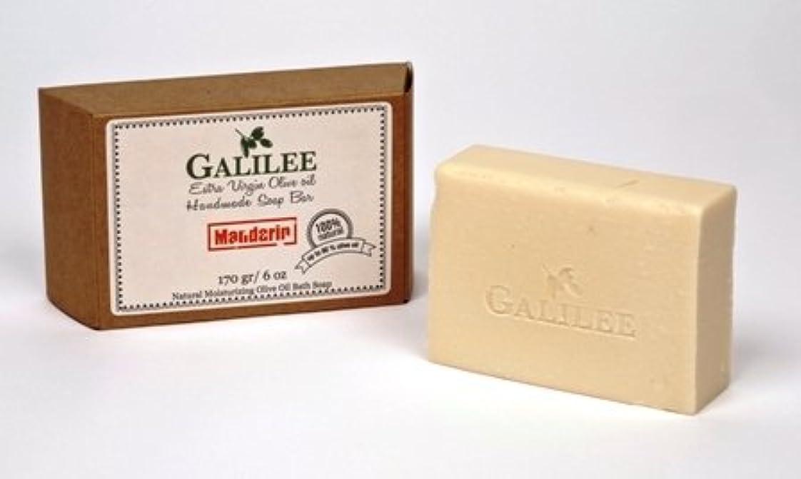 カウンタ小説家辞任Galilee Olive Oil Soap ガリラヤオリーブオイルソープバー 6oz ローズマリーミント&オリーブオイル