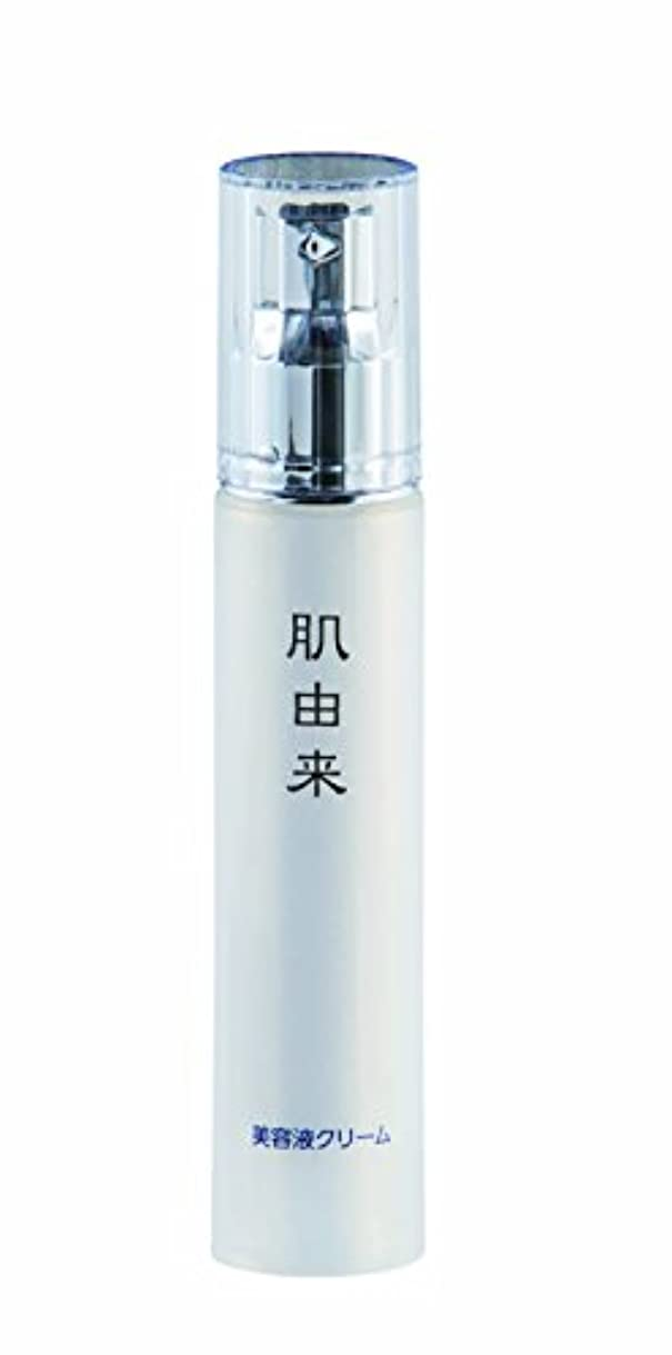 作り上げる抵当無数の肌由来化粧品 美容液クリーム 50ml
