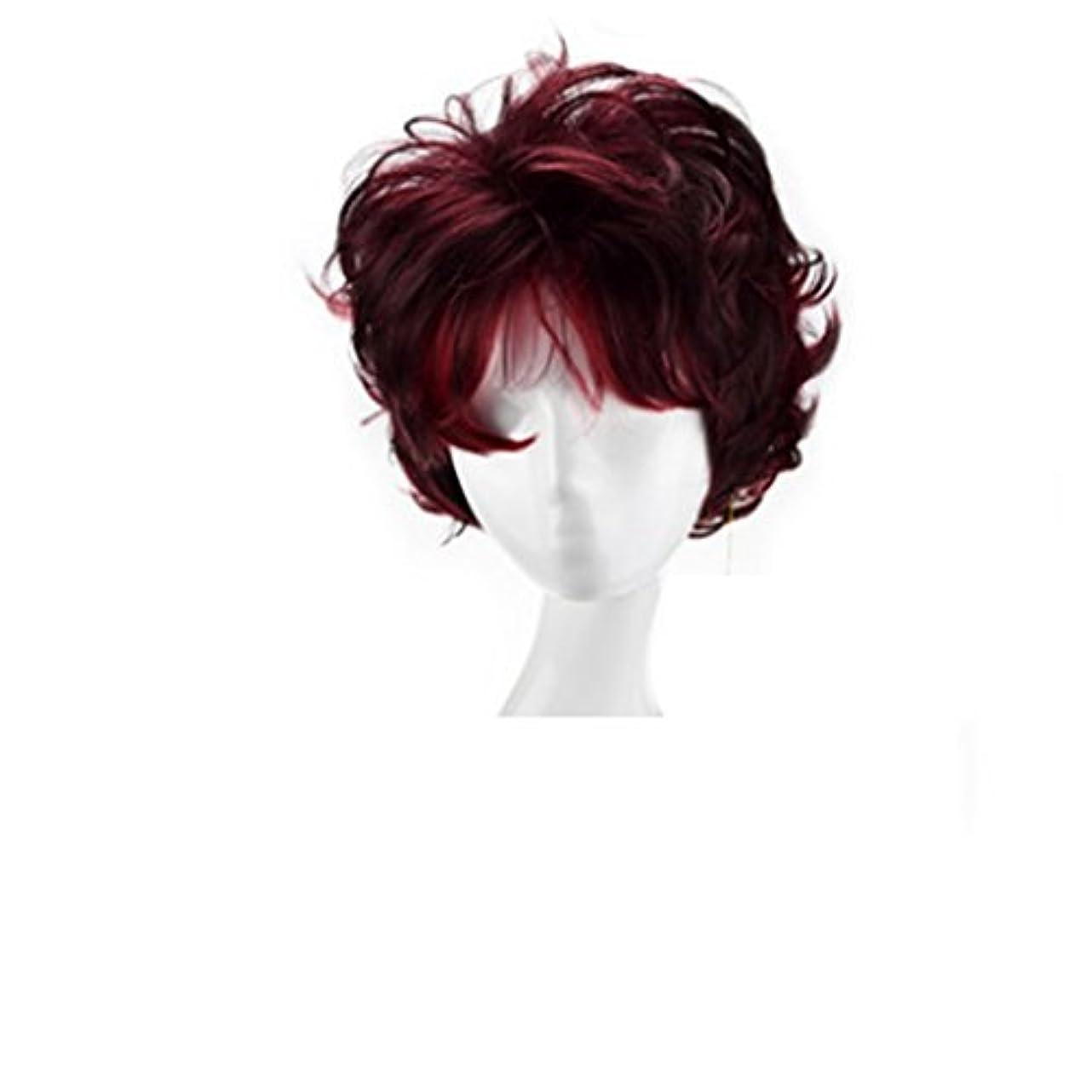 温かいパンフレット裁判所JIANFU 4インチボボショートロールウィッグワインレッド調節可能なサイズかつらセット - ナチュラルウィメンズウィッグ (Color : Wine red)