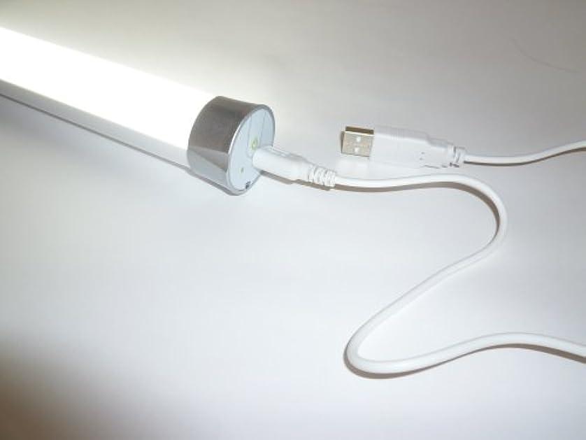引き渡すメモ肥沃なLED充電式ハンディライト navi tube 30㎝タイプ USB充電?連続12時間点灯