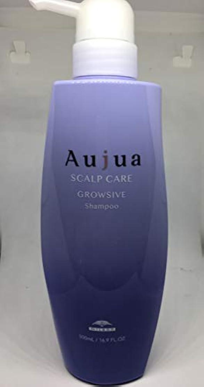 感心するフィードバック縞模様のオージュア GR グロウシブ シャンプー(医薬部外品)(500ml)