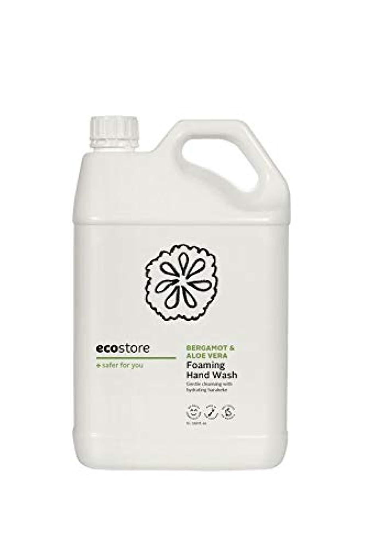 重量グラス砂のecostore(エコストア) ハンドウォッシュ 【ベルガモット&アロエベラ】 大容量 5L 詰め替え用 泡タイプ