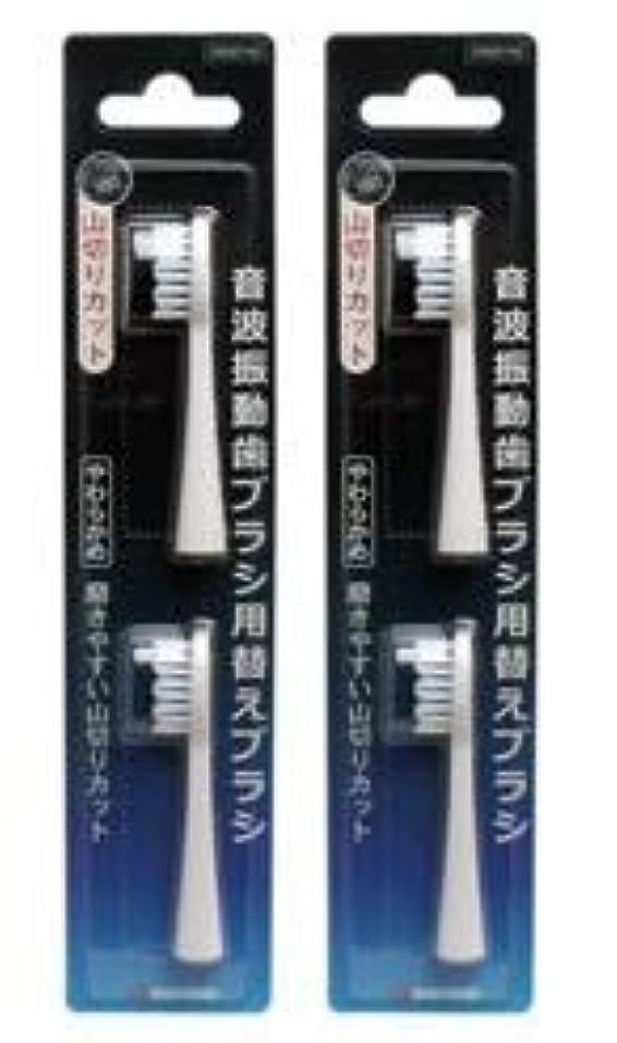 旅客売上高そよ風【マルマン】ミニモ、プロソニック1/2 替えブラシ 2個セット
