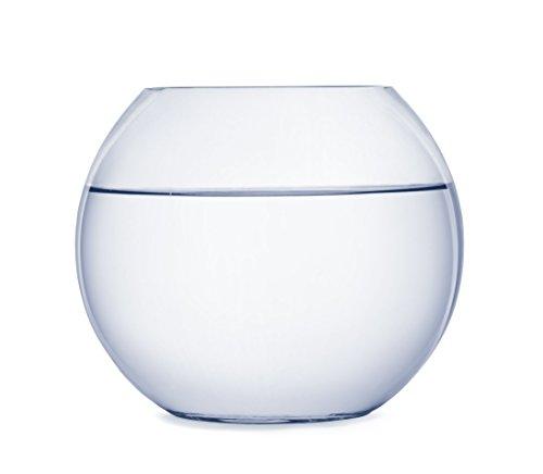 SACHI ガラス 丸型 水槽 大 テラリウム 観葉植物 インテリア アクアリウム 金魚鉢 にも (22cm)
