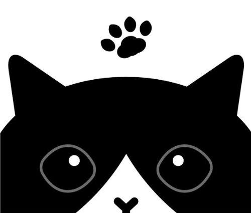 チラ見 猫 ステッカー ブラック & ホワイト[白黒猫]cst002-g