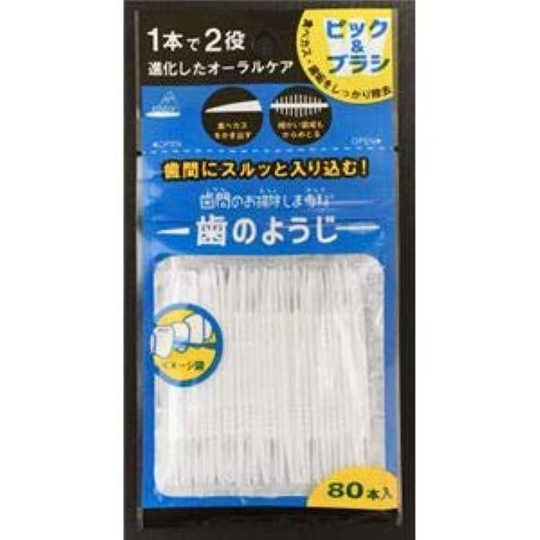ひどく側面タクシー(まとめ)アヌシ OB-807 歯間のお掃除しま専科 歯のようじ80本入 【×5点セット】