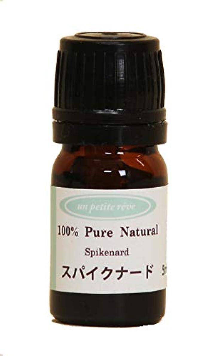 細部遺棄された差別化するスパイクナード 5ml 100%天然アロマエッセンシャルオイル(精油)