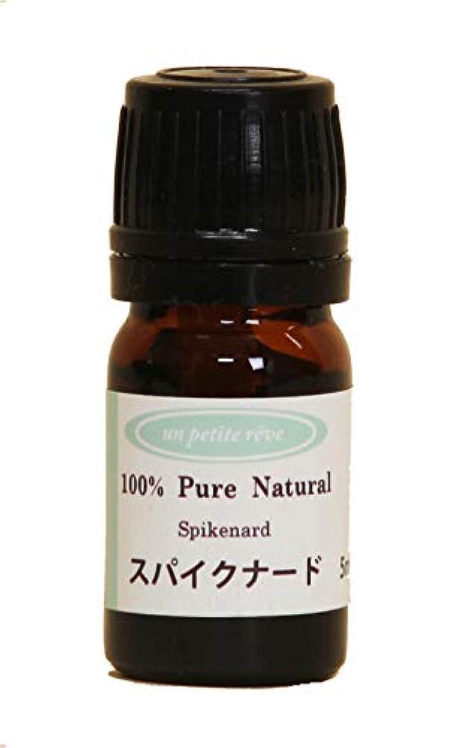凝視カカドゥ困惑するスパイクナード 5ml 100%天然アロマエッセンシャルオイル(精油)