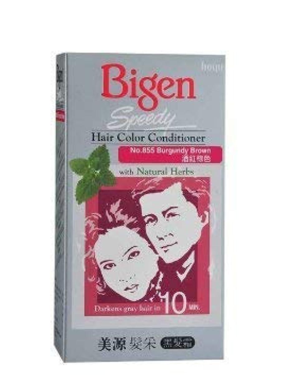 歯科の十代弾丸BIGEN クイックバーガンディブラウンのヘアコンディショナー天然ハーブ1