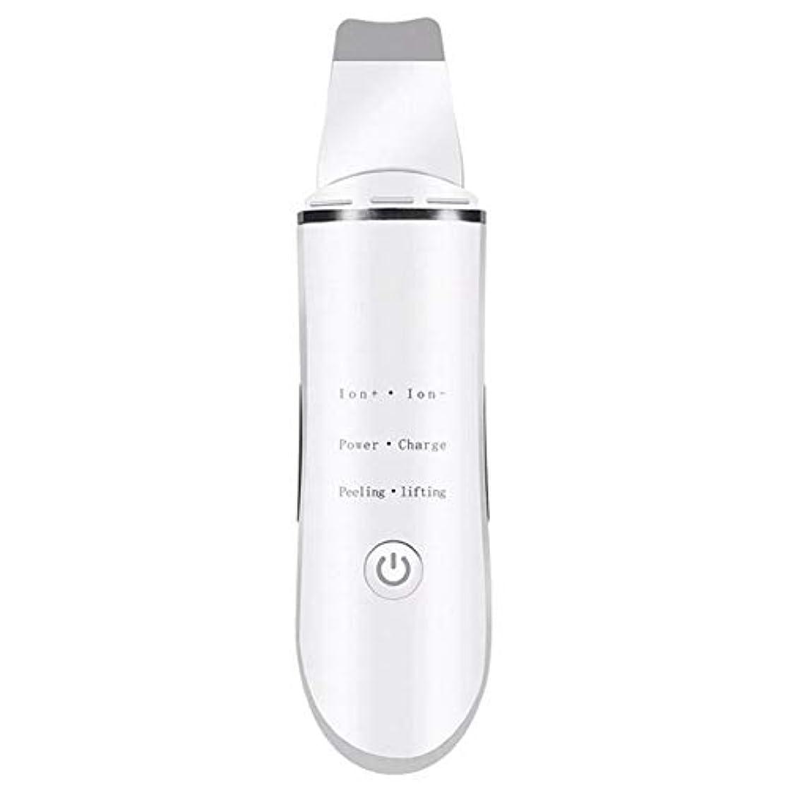 未就学枯渇する煩わしいにきび除去剤, にきびを取り除く きれいな毛穴 顔を持ち上げる 超音波ショベル イオンクリーニング 電気美容器具