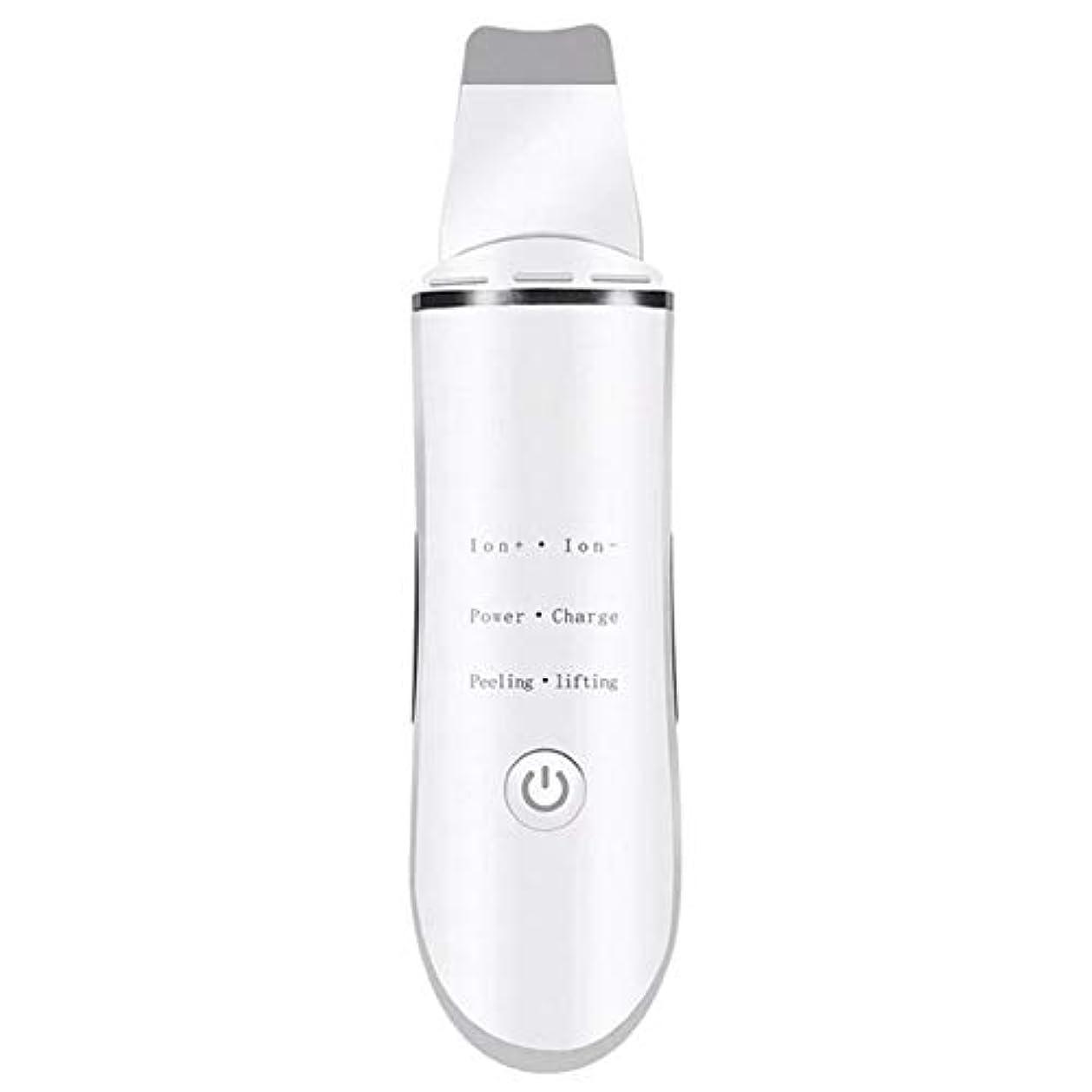 経度平らな音声学にきび除去剤, にきびを取り除く きれいな毛穴 顔を持ち上げる 超音波ショベル イオンクリーニング 電気美容器具