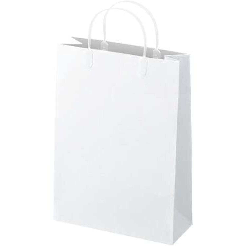 王子アドバ ラミネートバッグ A4 白