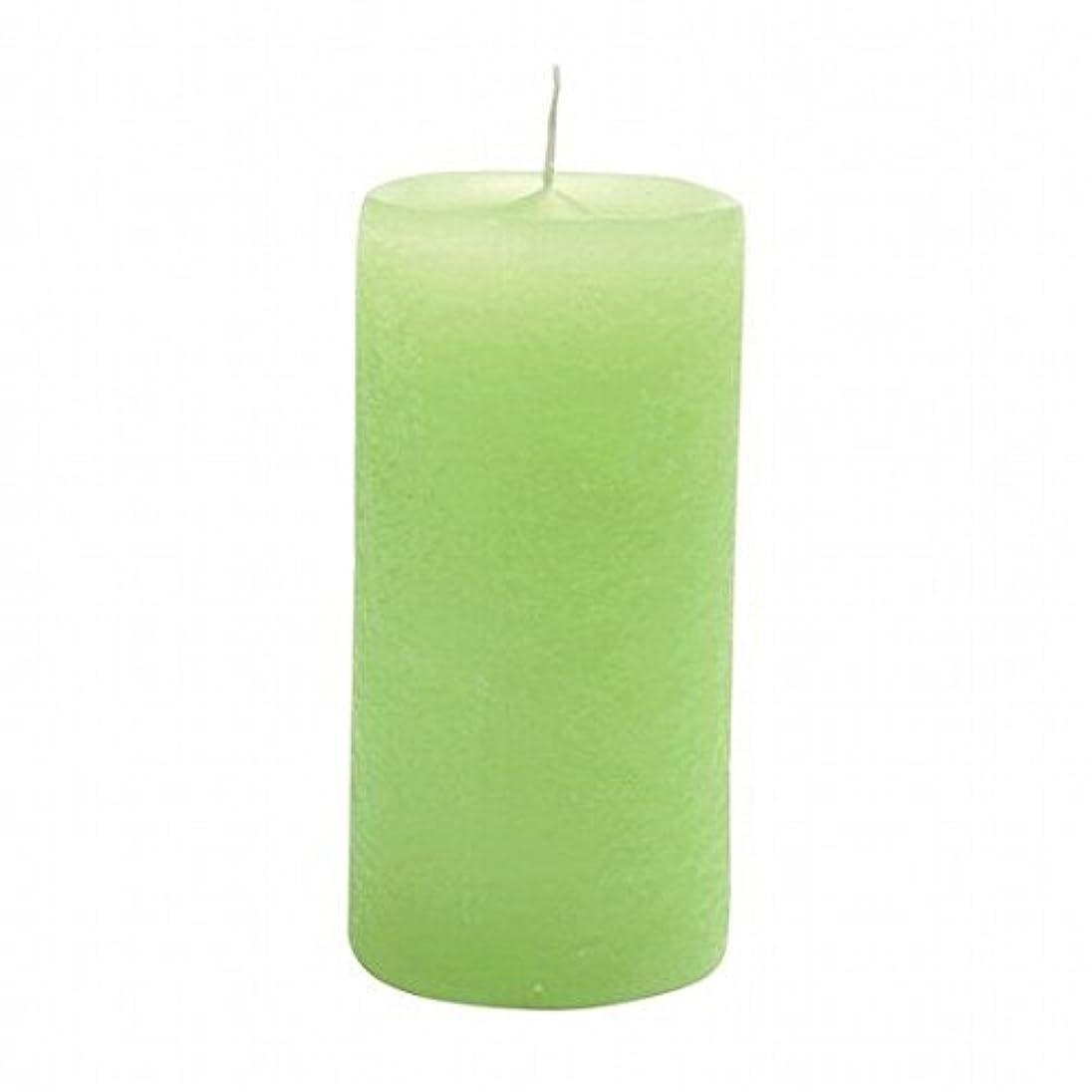 未満ファンタジー不変YANKEE CANDLE(ヤンキーキャンドル) ラスティクピラー50×100 「 ライトグリーン 」(A4930020LG)