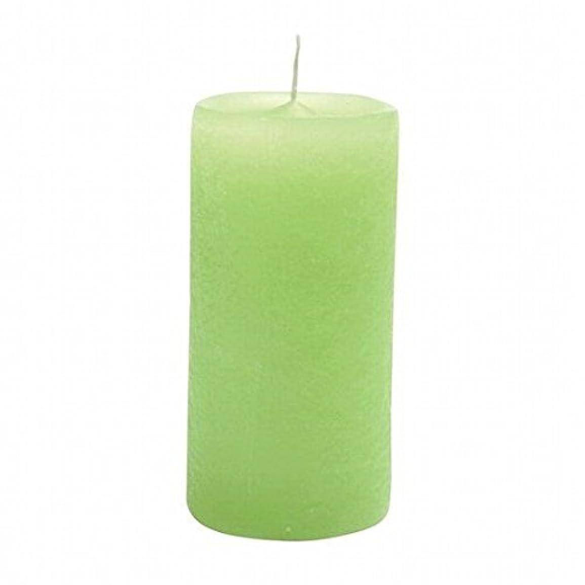 ライナーイソギンチャク櫛YANKEE CANDLE(ヤンキーキャンドル) ラスティクピラー50×100 「 ライトグリーン 」(A4930020LG)