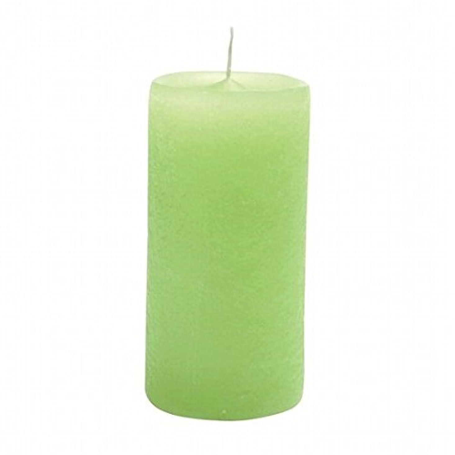 鷲素敵な物思いにふけるYANKEE CANDLE(ヤンキーキャンドル) ラスティクピラー50×100 「 ライトグリーン 」(A4930020LG)