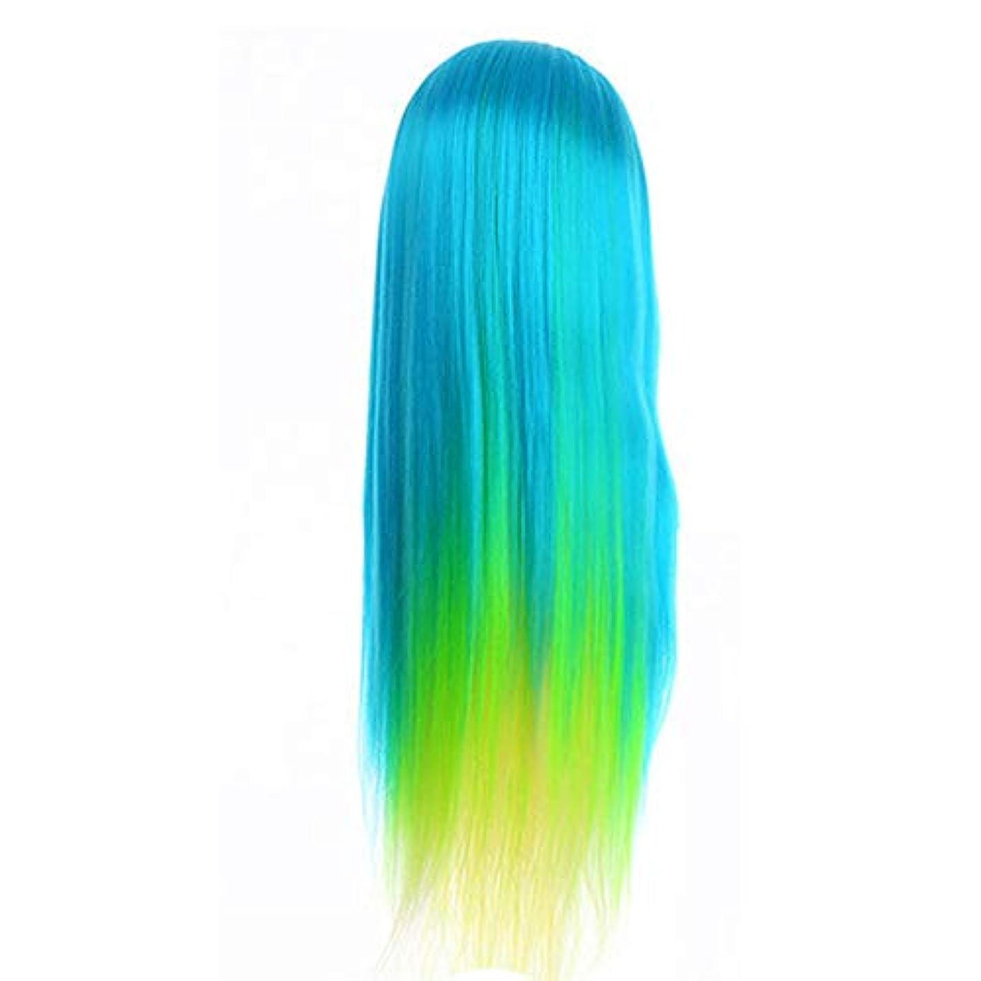 輪郭スキップ合法サロン散髪練習ヘッドモデルメイク学校編組髪開発学習モデルヘッドヘアストレートロングかつら