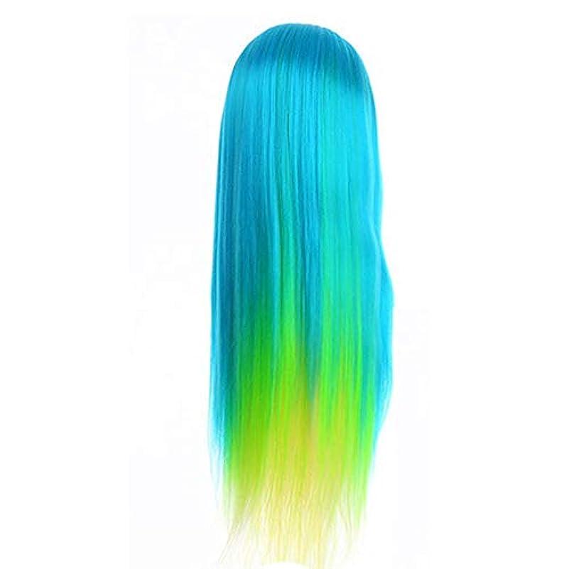 分解するかき混ぜる司書サロン散髪練習ヘッドモデルメイク学校編組髪開発学習モデルヘッドヘアストレートロングかつら