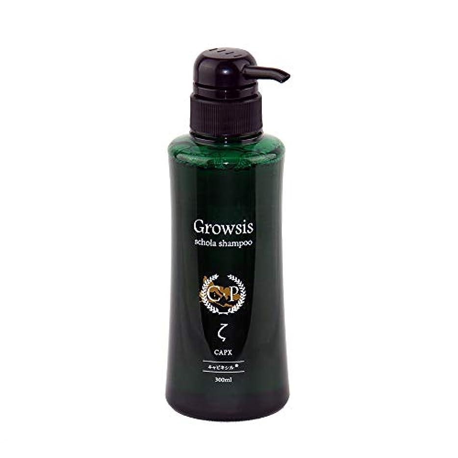 持っている開発環境抜け毛に悩んだらグロウシス スコラシャンプー ゼータ 300ml 「ミノキシジル」の3倍効果「キャピキシル」を業界最高濃度配合 うるおい成分「ベタイン」と「シラノール(ケイ素)」増量、ふけ、かゆみにも悩む人に。