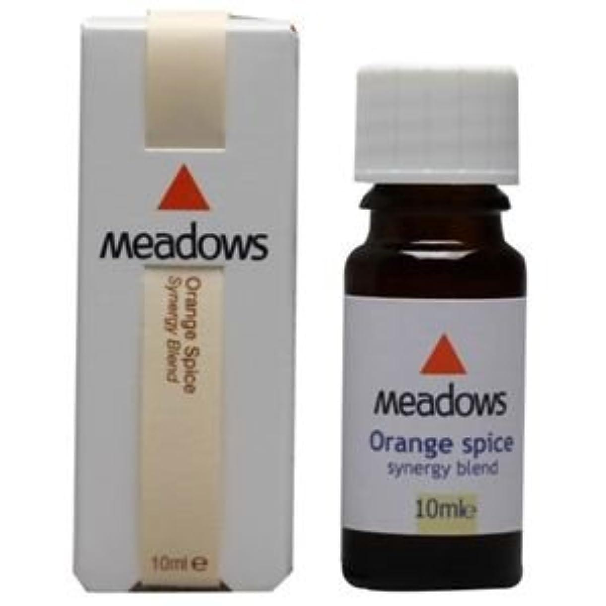 邪悪な連続的透けて見えるメドウズ オレンジスパイス 10ml アロマエッセンス