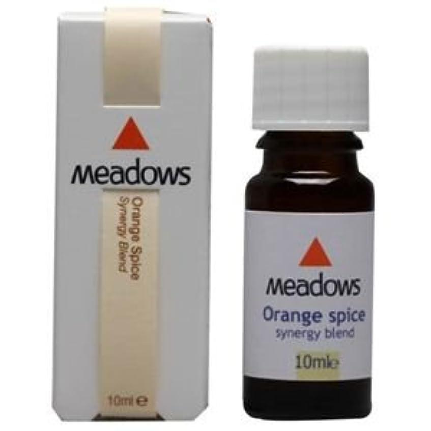 コスチューム膨らみネックレスメドウズ オレンジスパイス 10ml アロマエッセンス