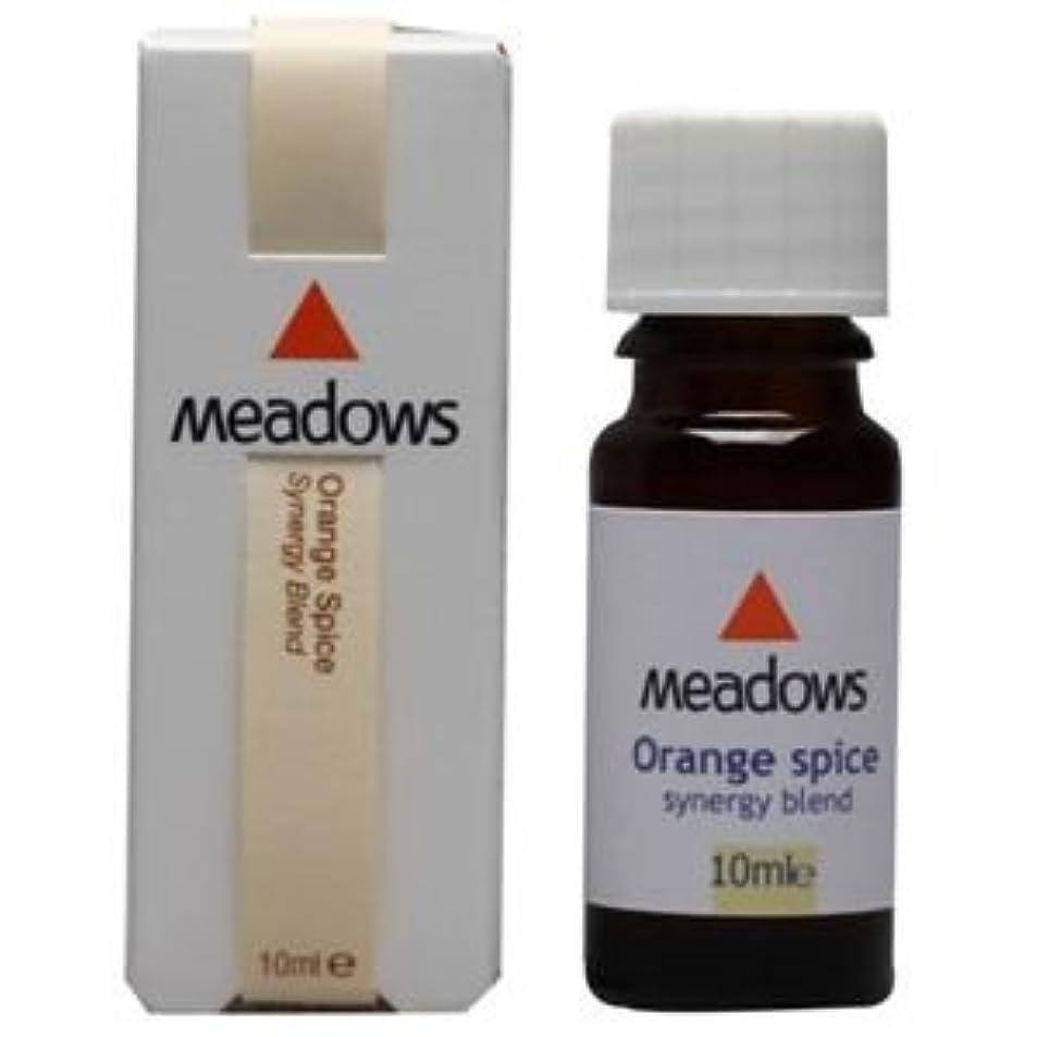 高度なスコットランド人アトラスメドウズ オレンジスパイス 10ml アロマエッセンス