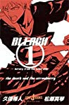 BLEACH ~letter from the other side~ (JUMP j BOOKS)