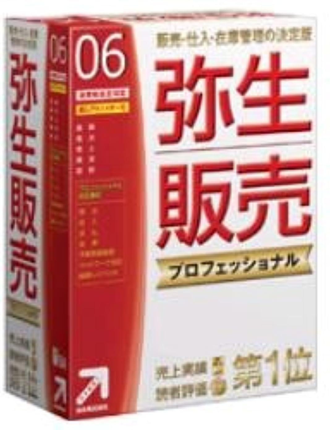 補正罰全く【旧商品】弥生販売 プロフェッショナル 06