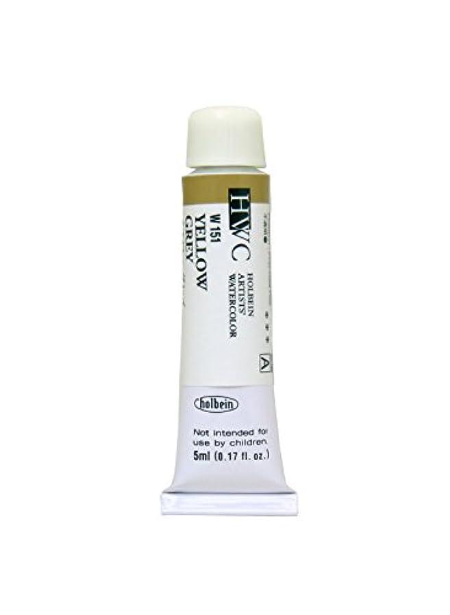 服消費前件ホルベイン 透明水彩絵具 イエローグレイ W151 5ml(2号)