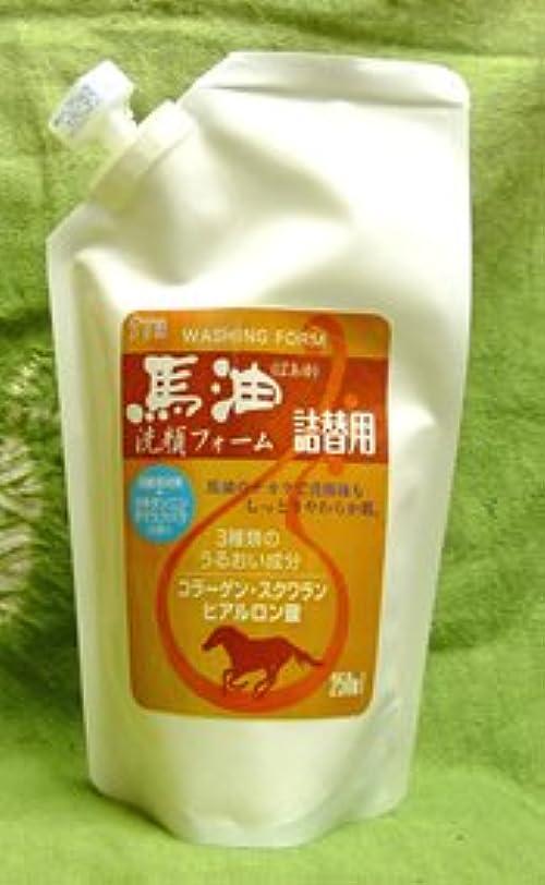 含む支援韓国語馬油洗顔フォーム詰替用250ml×2