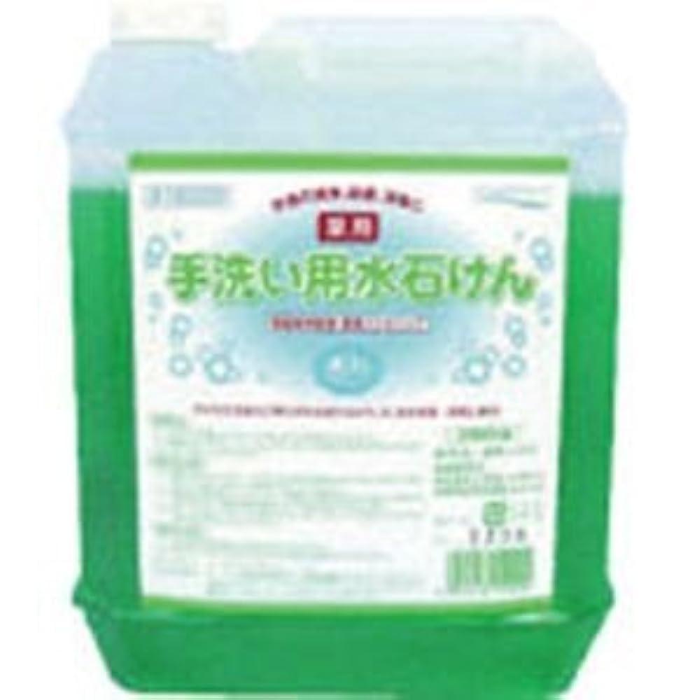 貸し手便利さ寛大な医薬部外品 泡タイプの薬用ハンドソープ 手洗い用水石けん5L×4個セット 15029-4