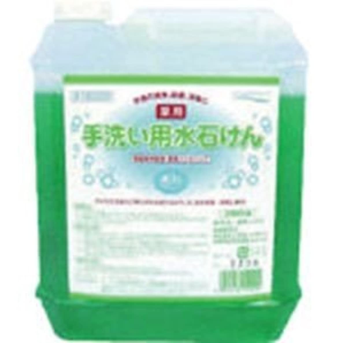 春パドルアウター医薬部外品 泡タイプの薬用ハンドソープ 手洗い用水石けん5L×4個セット 15029-4