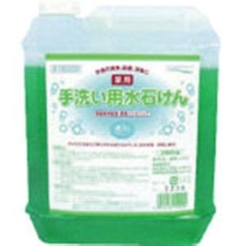 お世話になった無限土医薬部外品 泡タイプの薬用ハンドソープ 手洗い用水石けん5L×4個セット 15029-4
