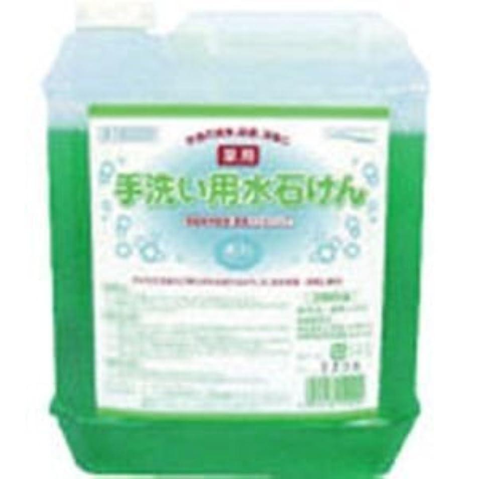 細分化する染料タクト医薬部外品 泡タイプの薬用ハンドソープ 手洗い用水石けん5L×4個セット 15029-4