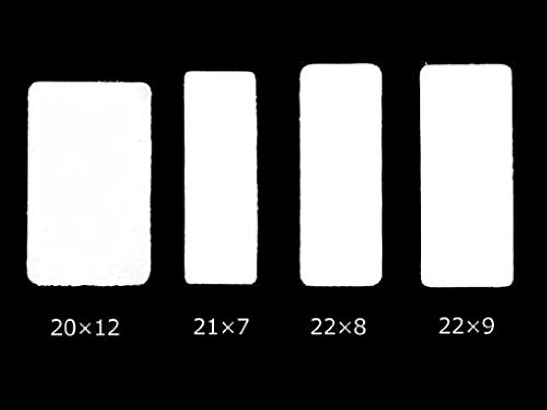 チェコ製小型昆虫貼付用台紙 (20×12(#37))